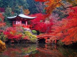 garden-of-Saiho-Ji-in-Kyoto-Japan