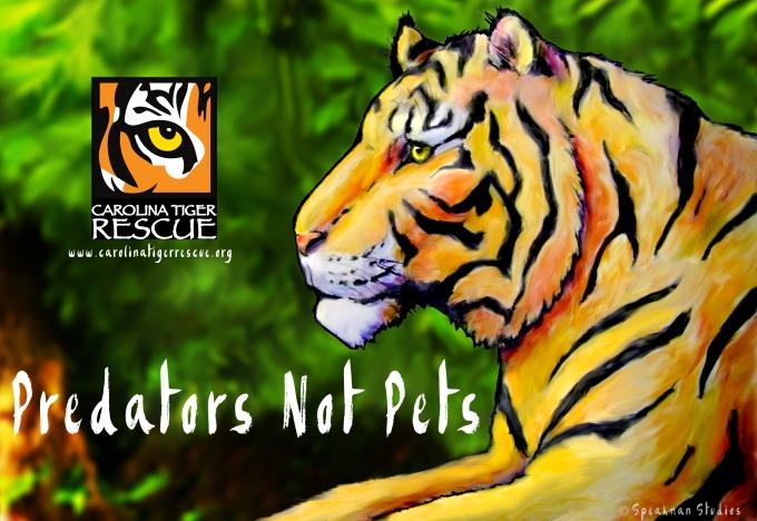 TigerPoster.jpg